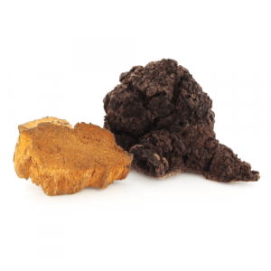 chaga_cl.png