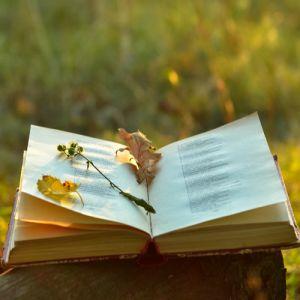 literatur_cl.jpg
