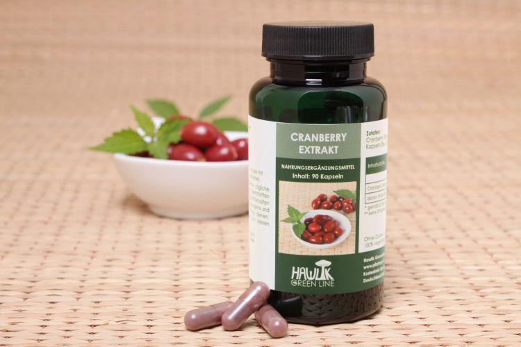 Cranberry Extrakt 90 Stk.