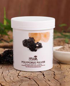 Polyporus Pulver 100g